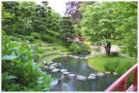 jardin-zen-japonais.jpg