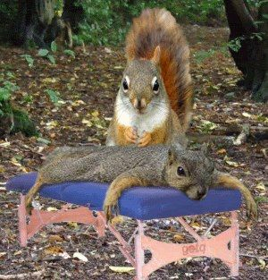 massage-a-l-huile-de-noisette-2.png
